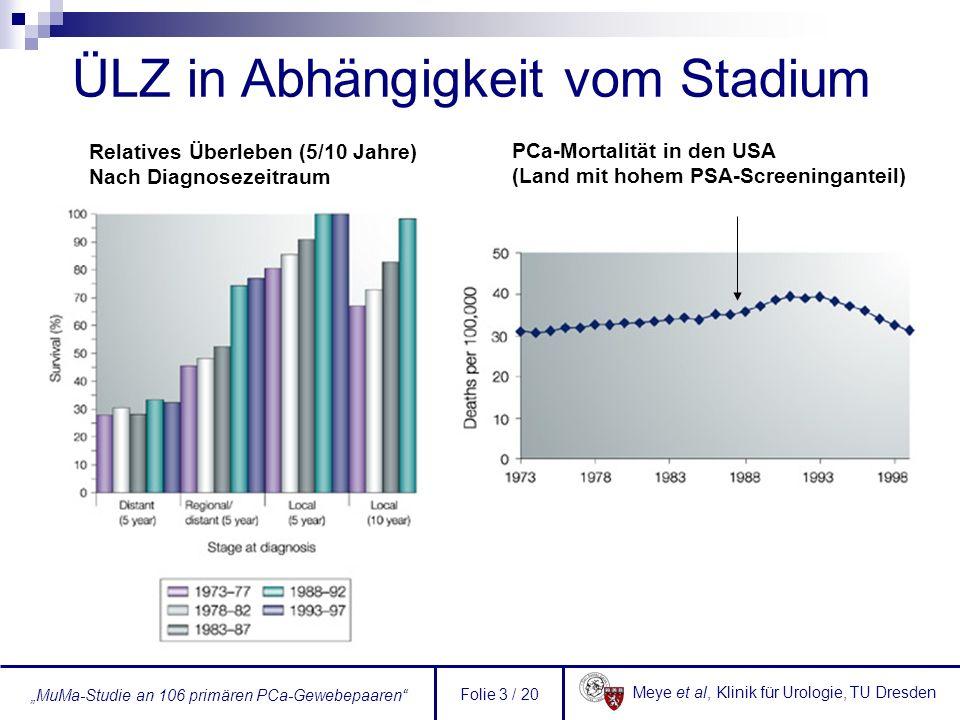 Meye et al, Klinik für Urologie, TU Dresden MuMa-Studie an 106 primären PCa-Gewebepaaren Folie 4 / 20 Prognostizierte Verbesserung des Überlebens im Falle einer Früherkennung (SEER-Daten 1990-99) KarzinomLokalisierte Tumoren bei Detektion (%) 5-JÜR (%) 5-JÜR, wenn alle Fälle bei Detektion lokalisierte Tumoren wären (%) Kolon-Ca416490 Lungen-Ca191649 Brust-Ca658797 PCa6590100 Suche nach neuen, besseren bzw.