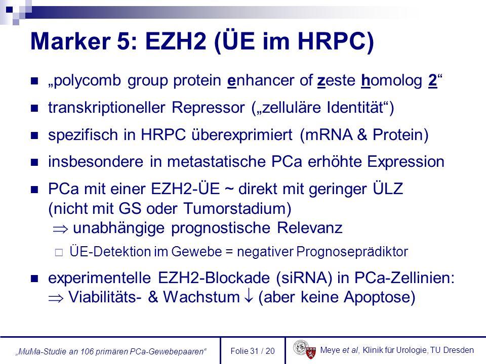Meye et al, Klinik für Urologie, TU Dresden MuMa-Studie an 106 primären PCa-Gewebepaaren Folie 31 / 20 Marker 5: EZH2 (ÜE im HRPC) polycomb group prot