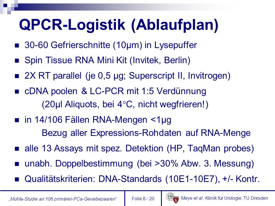 Meye et al, Klinik für Urologie, TU Dresden MuMa-Studie an 106 primären PCa-Gewebepaaren Folie 8 / 20 QPCR-Logistik (Ablaufplan) 30-60 Gefrierschnitte (10µm) in Lysepuffer Spin Tissue RNA Mini Kit (Invitek, Berlin) 2X RT parallel (je 0,5 µg; Superscript II, Invitrogen) cDNA poolen & LC-PCR mit 1:5 Verdünnung (20µl Aliquots, bei 4°C, nicht wegfrieren!) in 14/106 Fällen RNA-Mengen <1µg Bezug aller Expressions-Rohdaten auf RNA-Menge alle 13 Assays mit spez.