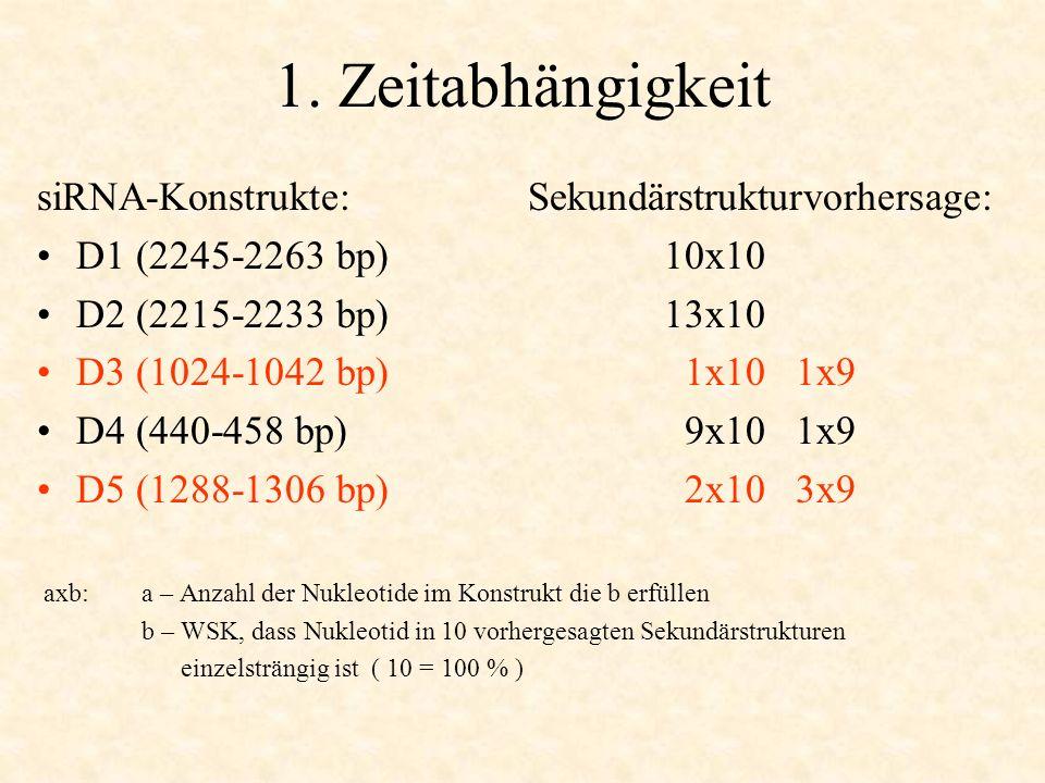 1. Zeitabhängigkeit siRNA-Konstrukte: Sekundärstrukturvorhersage: D1 (2245-2263 bp)10x10 D2 (2215-2233 bp)13x10 D3 (1024-1042 bp) 1x10 1x9 D4 (440-458