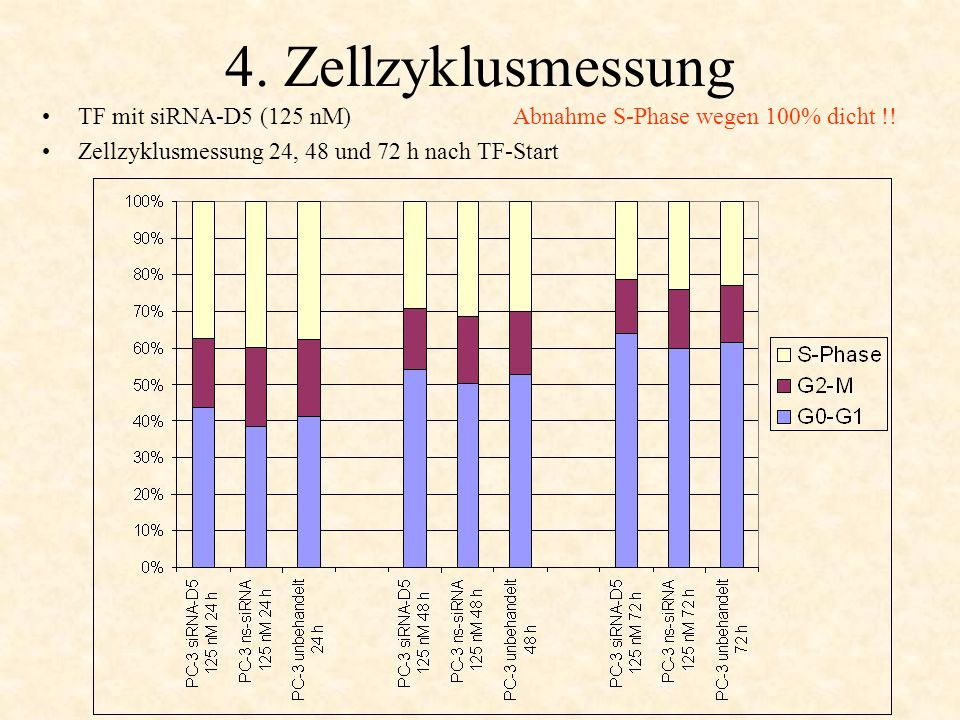 4. Zellzyklusmessung TF mit siRNA-D5 (125 nM) Abnahme S-Phase wegen 100% dicht !.