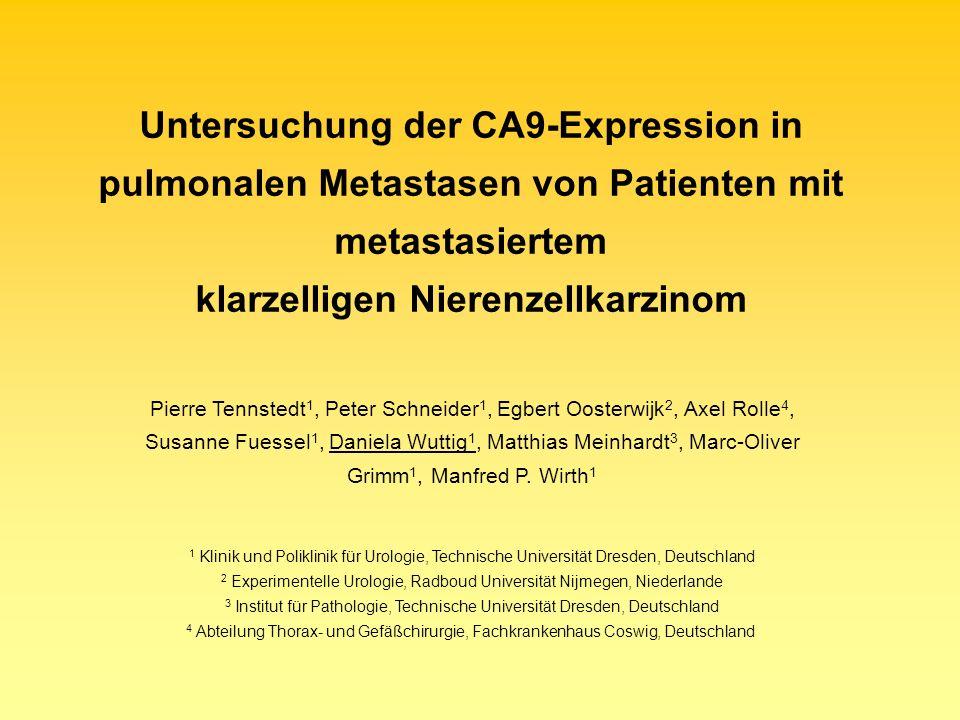 Patienten und Methoden: 83 Patienten: metastasiertes klarzelliges NZK partielle oder radikale Nephrektomie pulmonale Mets (1318nm-Laserresektion) von 535 Metastasen und 106 normalen Lungengeweben wurden Tissue Mikroarrays erstellt Tissue Microarrays wurden mit anti-humanem M75-Antikörper gegen CA9 gefärbt Auswertung der CA9 Expression erfolgte nach Punktesystem aus Produkt positiv-gefärbter Zellen und Färbeintensität Motivation & Zielstellung:CA9-Expression im klarzelligen NZK bereits in mehreren Studien beschrieben im NZK: CA9 im Vergleich zum nicht-malignen Nierengewebe hohe CA9-Expression im Tumor korreliert mit guter Prognose Nierenzellkarzinom (NZK) Was ist CA9 + Funktion