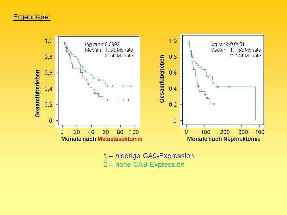 0 0,2 0,4 0,6 0,8 1,0 Geaamtüberleben 0 0,2 0,4 0,6 0,8 1,0 Gesamtüberleben 0 Monate nach Metastasektomie 0 Monate nach Nephrektomie 1 – niedrige CA9-