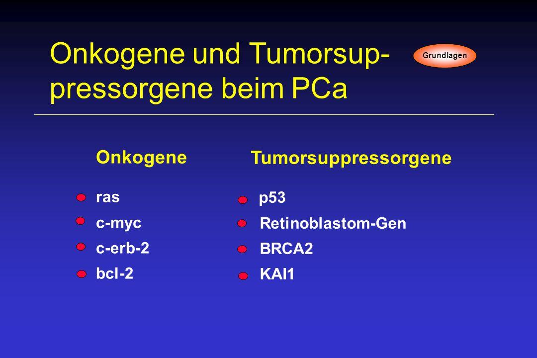 Tumorsuppressorgene p53 Retinoblastom-Gen BRCA2 KAI1 Onkogene und Tumorsup- pressorgene beim PCa Onkogene ras c-myc c-erb-2 bcl-2 Grundlagen