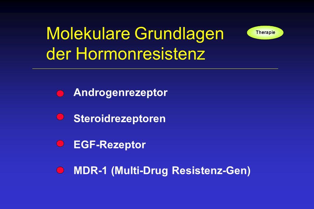 Molekulare Grundlagen der Hormonresistenz Androgenrezeptor Steroidrezeptoren EGF-Rezeptor MDR-1 (Multi-Drug Resistenz-Gen) Therapie
