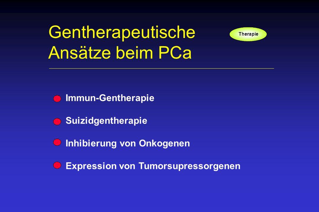Immun-Gentherapie Suizidgentherapie Inhibierung von Onkogenen Expression von Tumorsupressorgenen Gentherapeutische Ansätze beim PCa Therapie