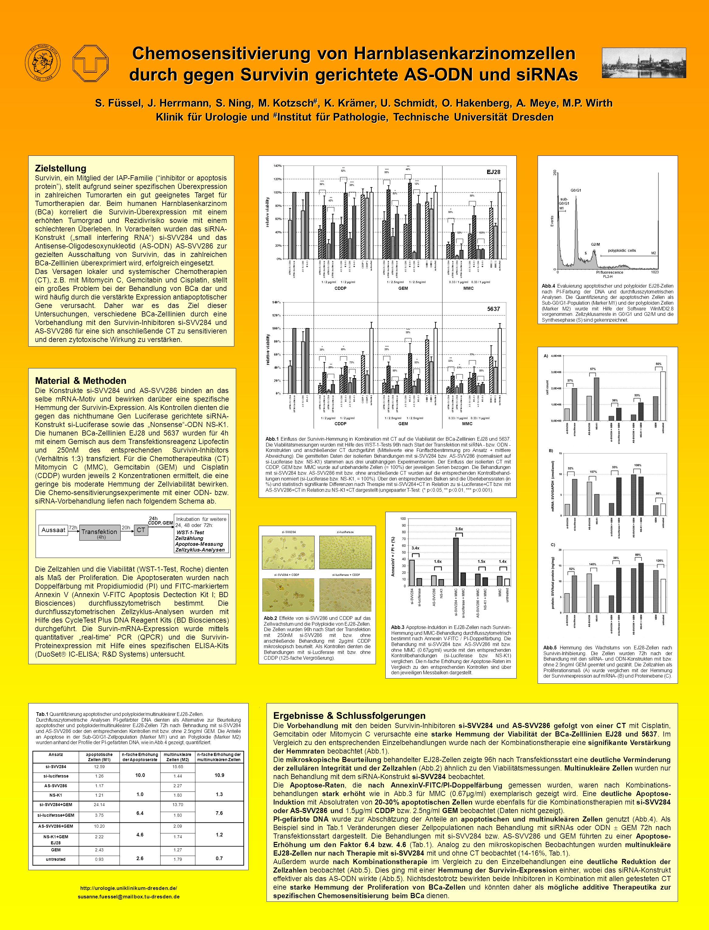http://urologie.uniklinikum-dresden.de/ susanne.fuessel@mailbox.tu-dresden.de Tab.1 Quantifizierung apoptotischer und polyploider/multinukleärer EJ28-Zellen.