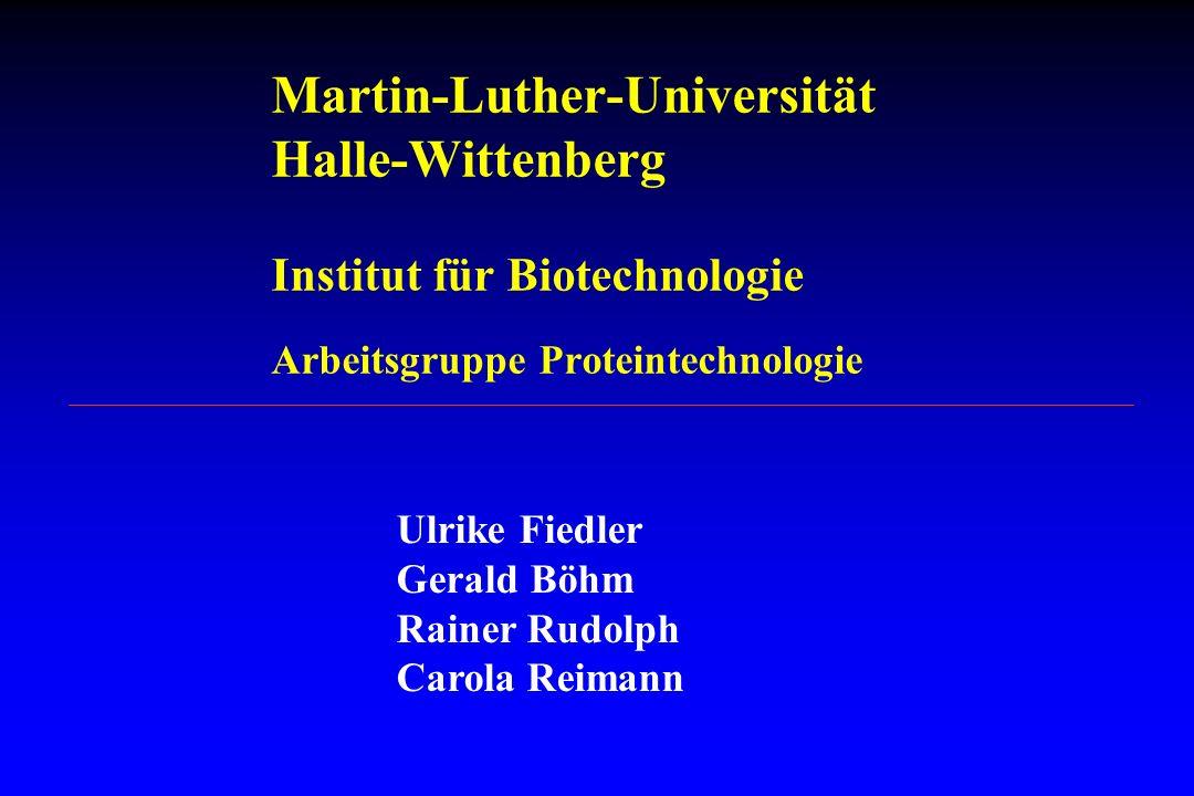 Martin-Luther-Universität Halle-Wittenberg Institut für Biotechnologie Arbeitsgruppe Proteintechnologie Ulrike Fiedler Gerald Böhm Rainer Rudolph Caro