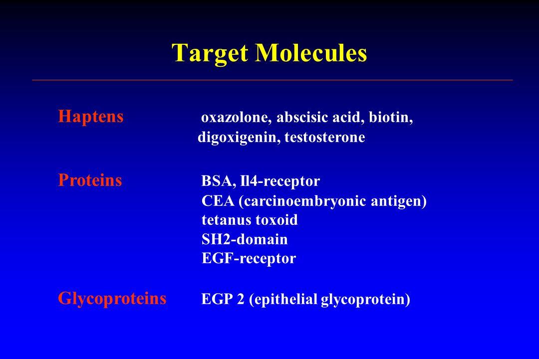 Target Molecules Haptens oxazolone, abscisic acid, biotin, digoxigenin, testosterone Proteins BSA, Il4-receptor CEA (carcinoembryonic antigen) tetanus