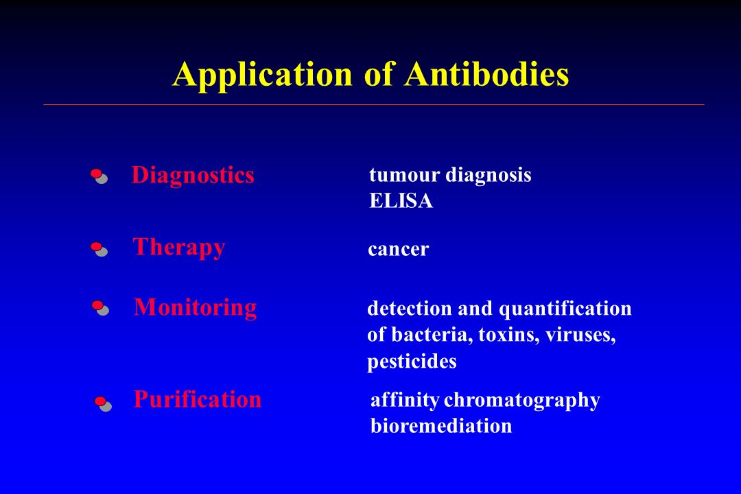 Application of Antibodies Diagnostics Therapy Monitoring Purification tumour diagnosis ELISA cancer detection and quantification of bacteria, toxins,