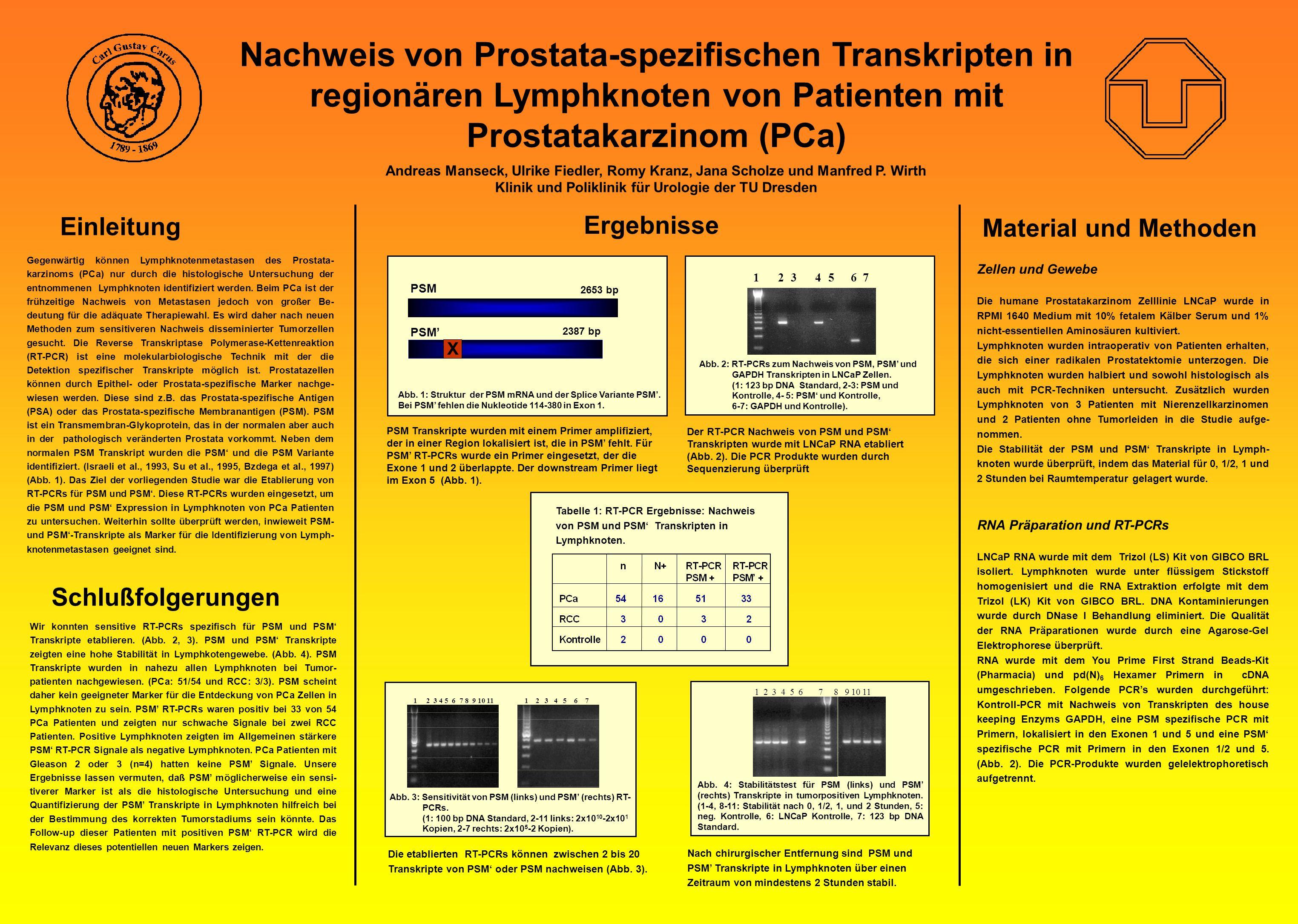 Nachweis von Prostata-spezifischen Transkripten in regionären Lymphknoten von Patienten mit Prostatakarzinom (PCa) Andreas Manseck, Ulrike Fiedler, Ro