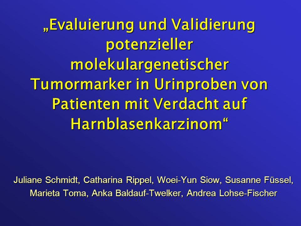 Juliane Schmidt, Catharina Rippel, Woei-Yun Siow, Susanne Füssel, Marieta Toma, Anka Baldauf-Twelker, Andrea Lohse-Fischer Evaluierung und Validierung