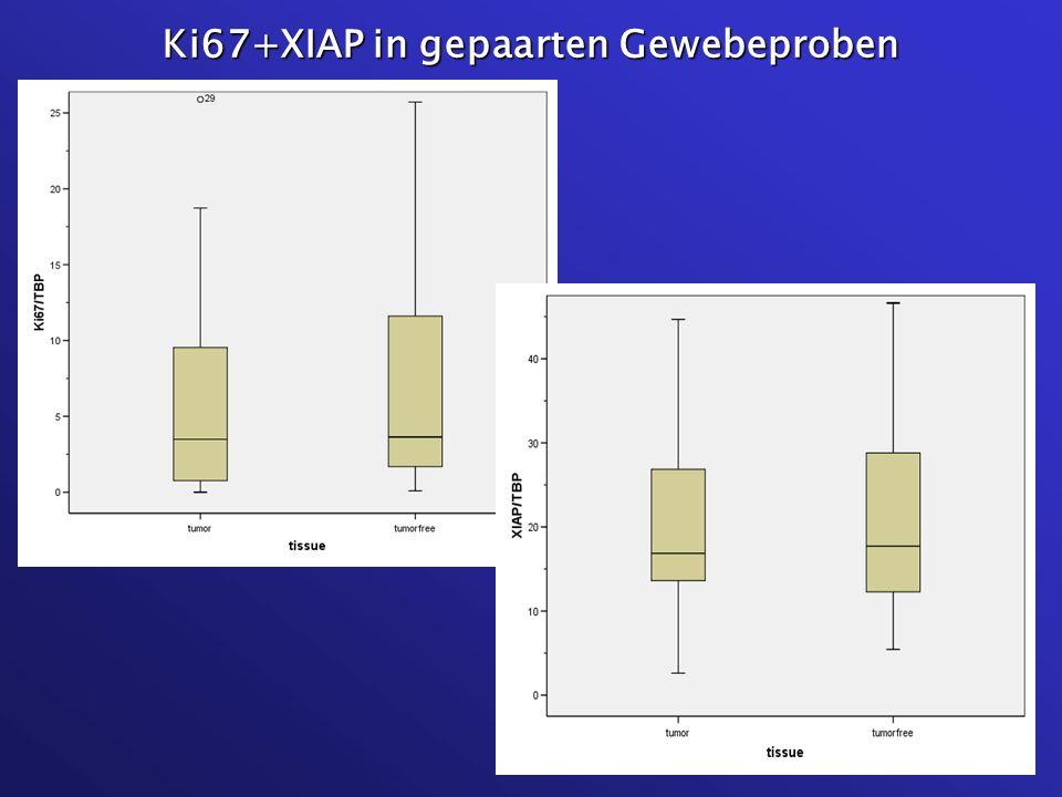 Ki67+XIAP in gepaarten Gewebeproben