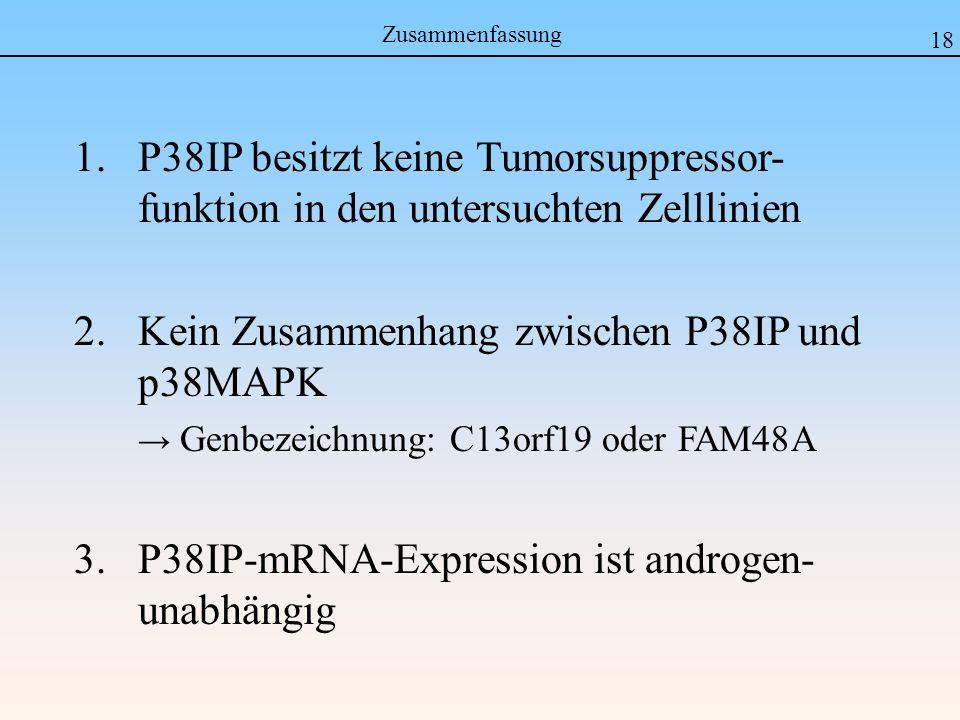 Zusammenfassung 18 1.P38IP besitzt keine Tumorsuppressor- funktion in den untersuchten Zelllinien 2.Kein Zusammenhang zwischen P38IP und p38MAPK Genbezeichnung: C13orf19 oder FAM48A 3.
