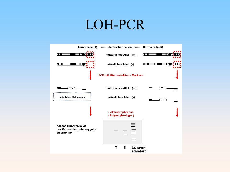 LOH-PCR