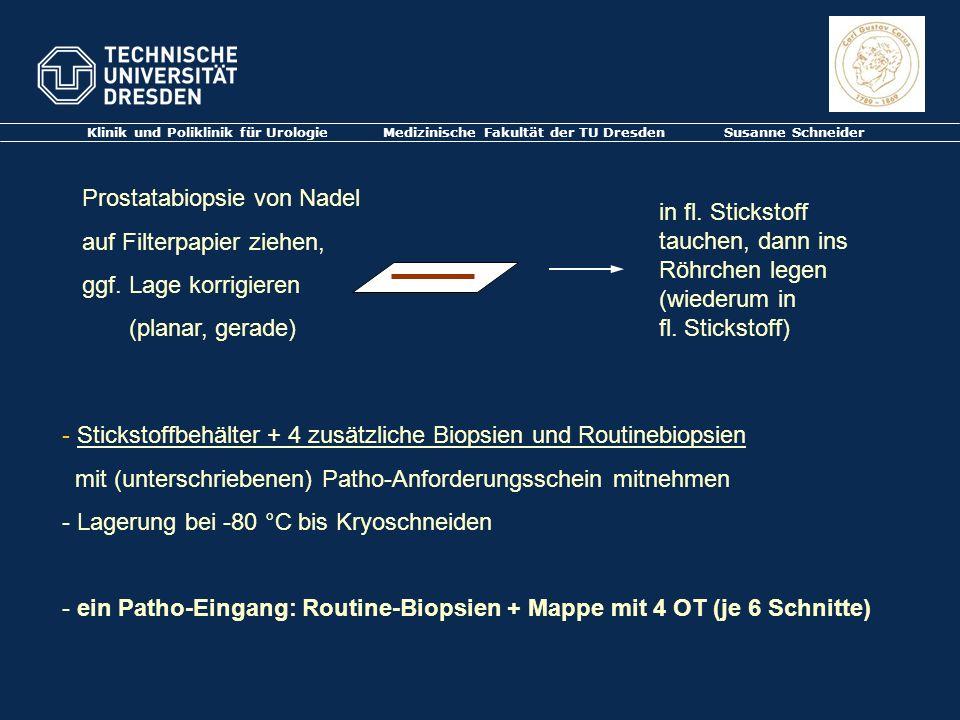 Klinik und Poliklinik für Urologie Medizinische Fakultät der TU Dresden Susanne Schneider Prostatabiopsie von Nadel auf Filterpapier ziehen, ggf. Lage