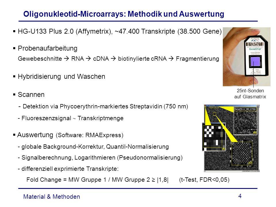 4 Oligonukleotid-Microarrays: Methodik und Auswertung Material & Methoden HG-U133 Plus 2.0 (Affymetrix), 47.400 Transkripte (38.500 Gene) Probenaufarb
