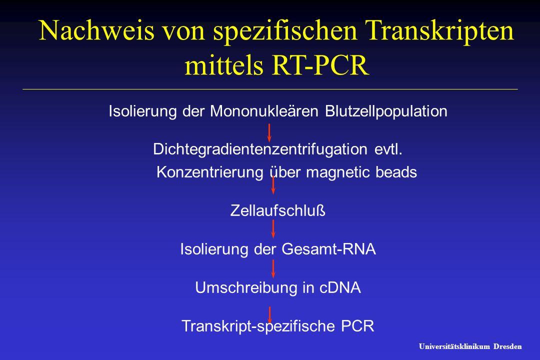 Universitätsklinikum Dresden Nachweis von spezifischen Transkripten mittels RT-PCR Isolierung der Mononukleären Blutzellpopulation Dichtegradientenzen