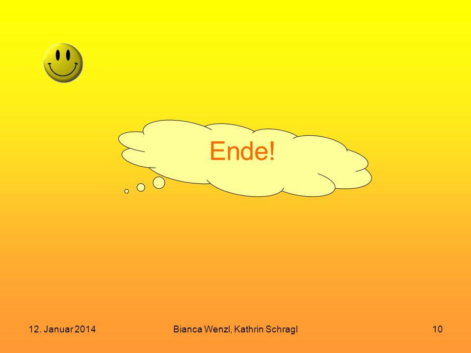 12. Januar 2014Bianca Wenzl, Kathrin Schragl10 Ende!