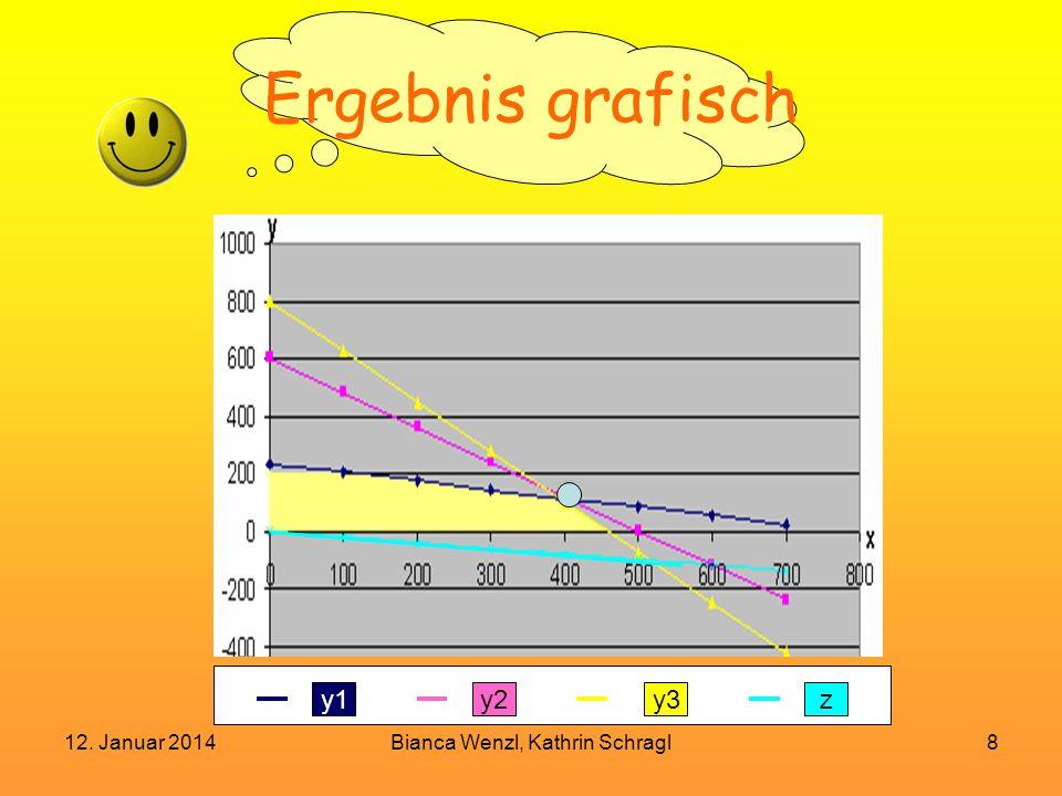 12. Januar 2014Bianca Wenzl, Kathrin Schragl8 Ergebnis grafisch y1y2zy3