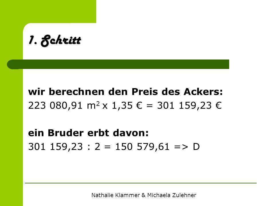 Nathalie Klammer & Michaela Zulehner 1. Schritt wir berechnen den Preis des Ackers: 223 080,91 m 2 x 1,35 = 301 159,23 ein Bruder erbt davon: 301 159,