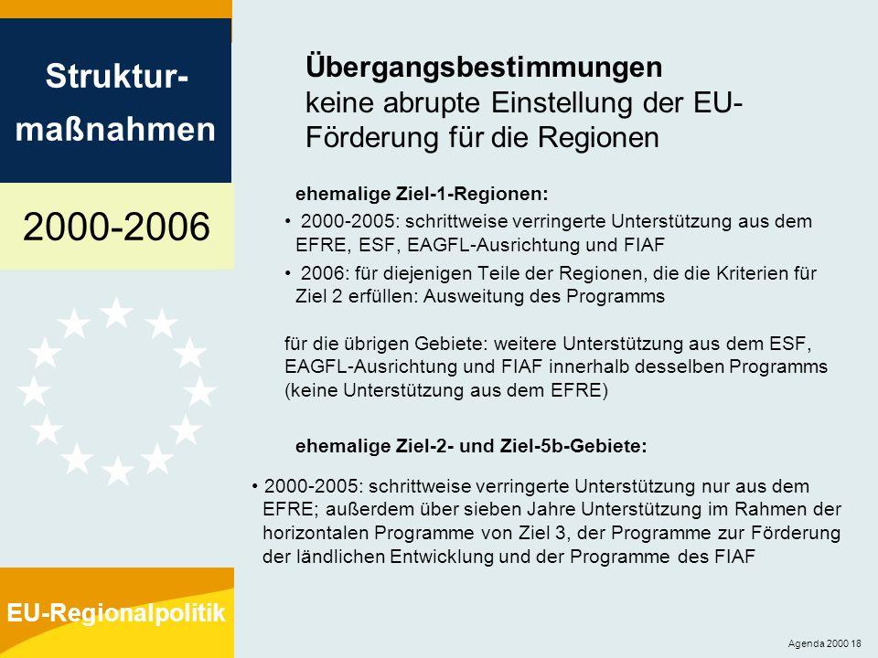 2000-2006 Struktur- maßnahmen EU-Regionalpolitik Agenda 2000 18 Übergangsbestimmungen keine abrupte Einstellung der EU- Förderung für die Regionen ehe