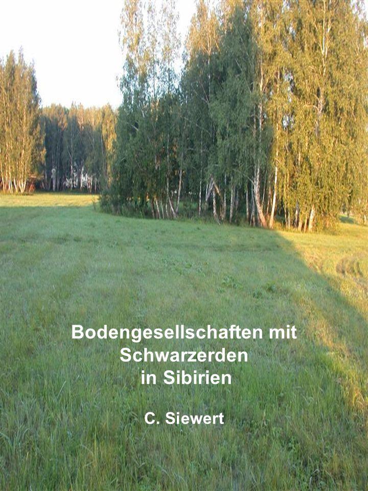 Bodengesellschaften mit Schwarzerden in Sibirien C. Siewert