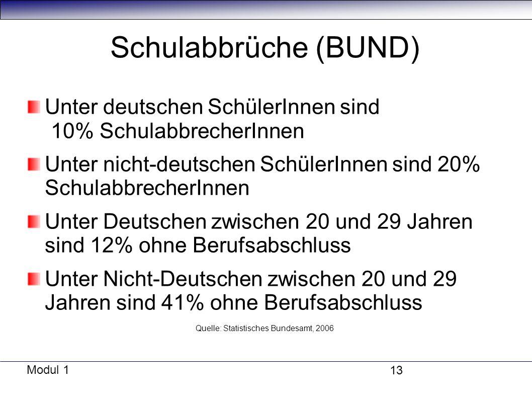 Modul 1 13 Schulabbrüche (BUND) Unter deutschen SchülerInnen sind 10% SchulabbrecherInnen Unter nicht-deutschen SchülerInnen sind 20% SchulabbrecherInnen Unter Deutschen zwischen 20 und 29 Jahren sind 12% ohne Berufsabschluss Unter Nicht-Deutschen zwischen 20 und 29 Jahren sind 41% ohne Berufsabschluss Quelle: Statistisches Bundesamt, 2006