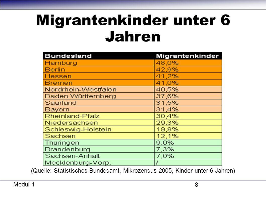 Modul 1 8 Migrantenkinder unter 6 Jahren (Quelle: Statistisches Bundesamt, Mikrozensus 2005, Kinder unter 6 Jahren)