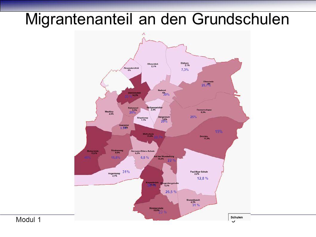 Modul 1 9 Migrantenanteil an den Grundschulen 15% 12,8 % 31 % 23 % 26,5 % 50 % 22 % 6,8 % 31% 15,6%45% 22,7 % 9,5% 20% 29% 25% 25,7% 7,3% 30% 23 %
