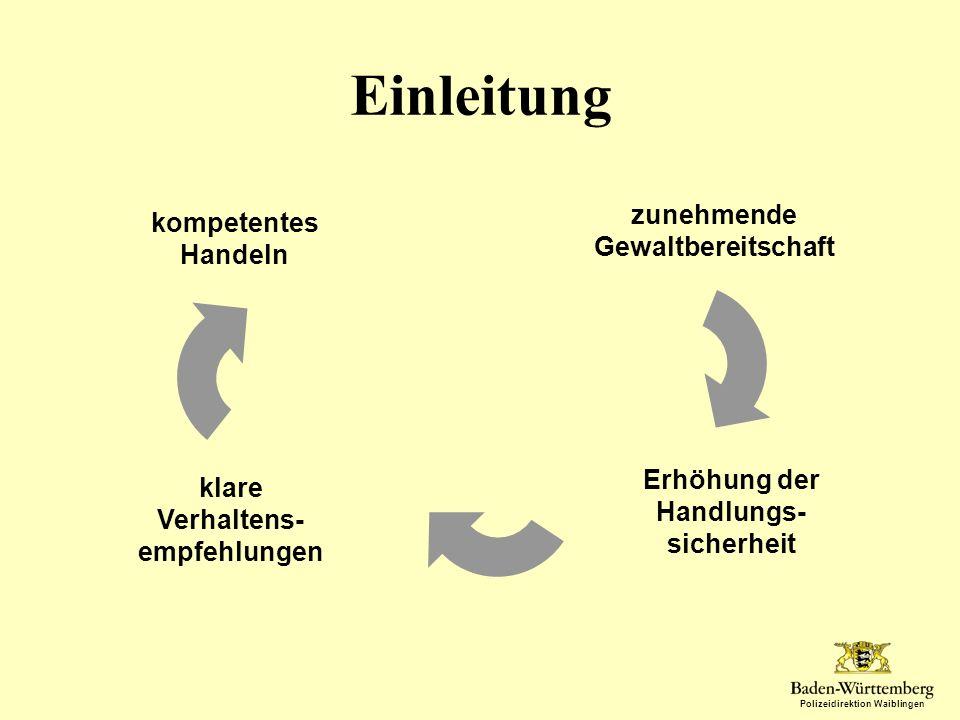 Polizeidirektion Waiblingen Lagebild Ein alltägliches Phänomen? Nein!!!