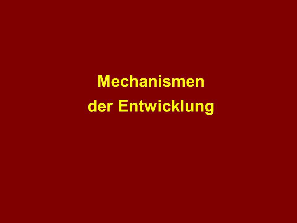 Mechanismen der Entwicklung