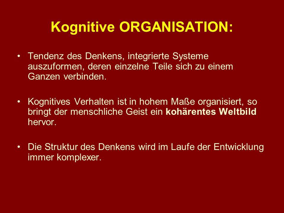 Kognitive ORGANISATION: Tendenz des Denkens, integrierte Systeme auszuformen, deren einzelne Teile sich zu einem Ganzen verbinden. Kognitives Verhalte