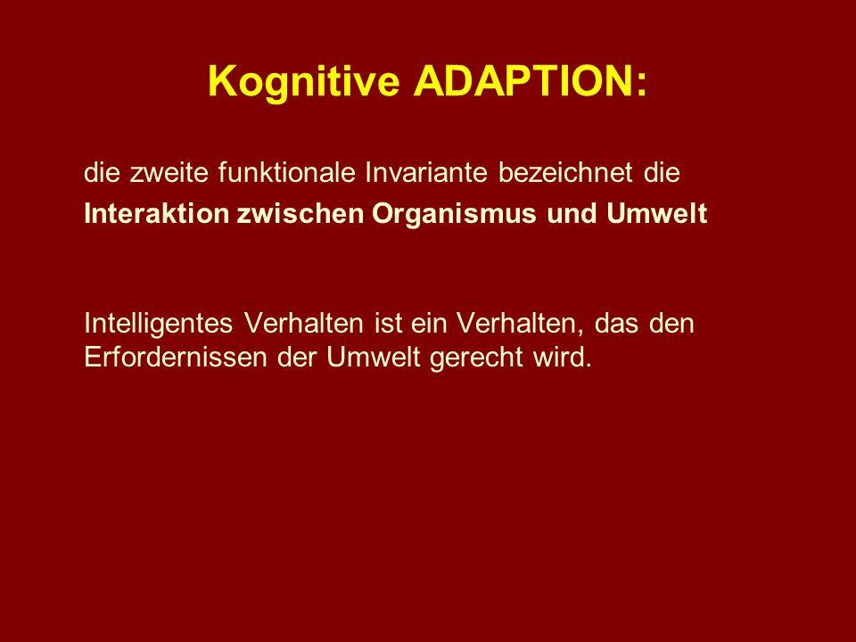 Kognitive ADAPTION: die zweite funktionale Invariante bezeichnet die Interaktion zwischen Organismus und Umwelt Intelligentes Verhalten ist ein Verhal