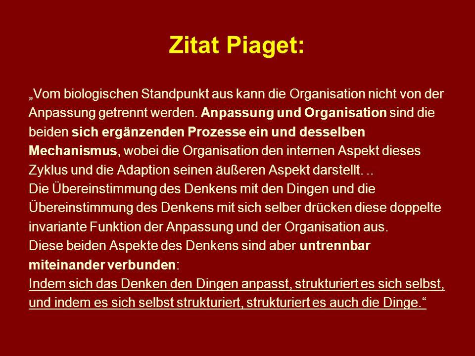 Zitat Piaget: Vom biologischen Standpunkt aus kann die Organisation nicht von der Anpassung getrennt werden. Anpassung und Organisation sind die beide