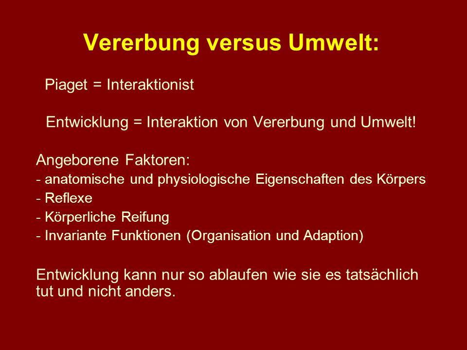 Vererbung versus Umwelt: Piaget = Interaktionist Entwicklung = Interaktion von Vererbung und Umwelt! Angeborene Faktoren: - anatomische und physiologi