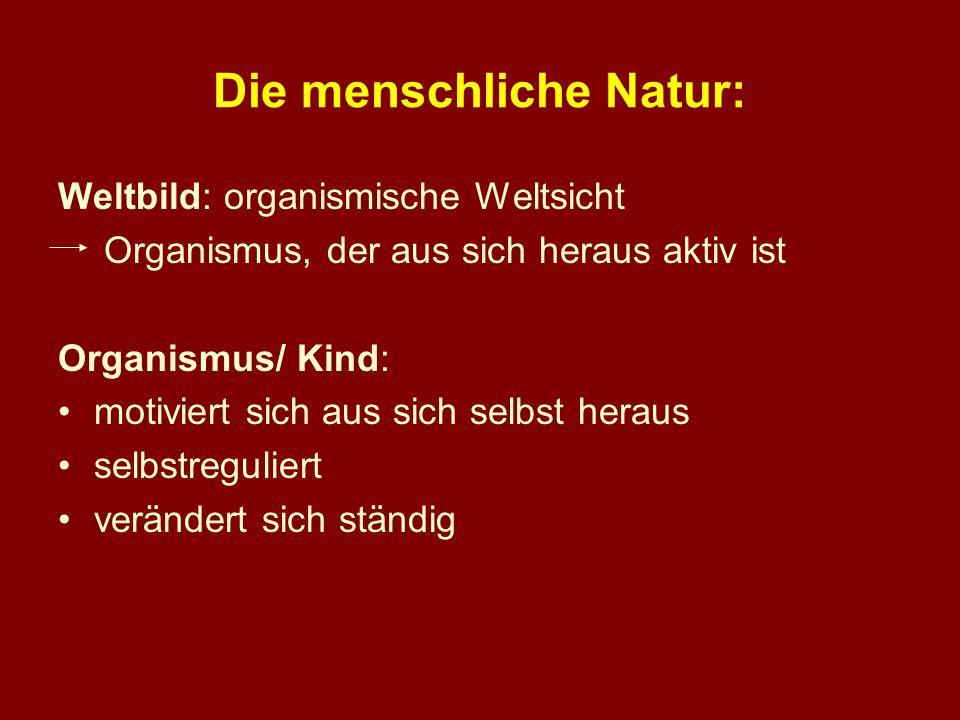 Die menschliche Natur: Weltbild: organismische Weltsicht Organismus, der aus sich heraus aktiv ist Organismus/ Kind: motiviert sich aus sich selbst he