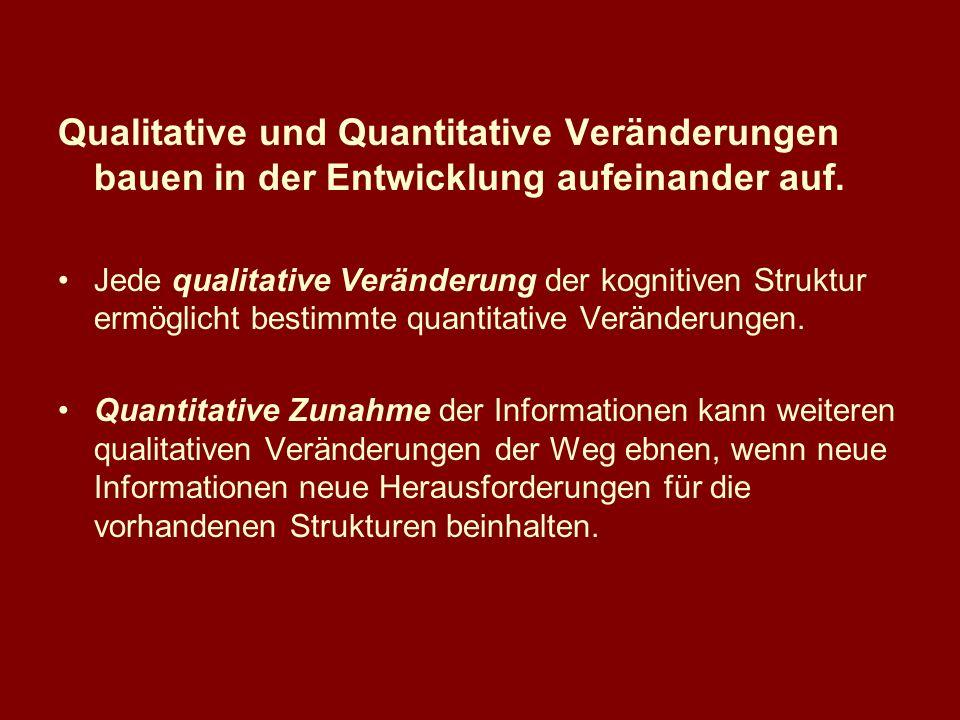 Qualitative und Quantitative Veränderungen bauen in der Entwicklung aufeinander auf. Jede qualitative Veränderung der kognitiven Struktur ermöglicht b