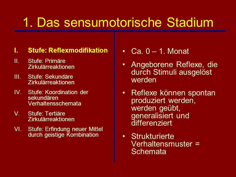 1. Das sensumotorische Stadium I.Stufe: Reflexmodifikation II.Stufe: Primäre Zirkulärreaktionen III.Stufe: Sekundäre Zirkulärreaktionen IV.Stufe: Koor