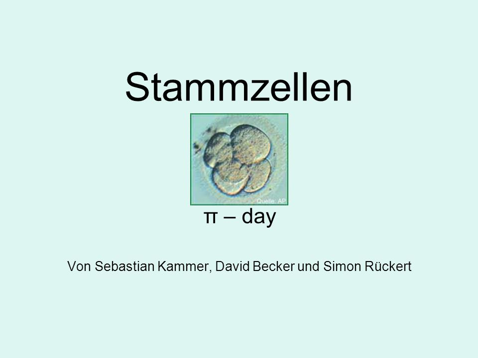 Stammzellen π – day Von Sebastian Kammer, David Becker und Simon Rückert