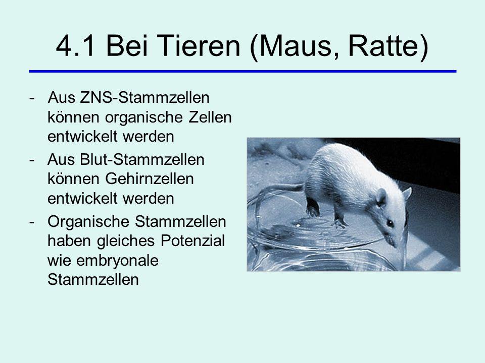 4.1 Bei Tieren (Maus, Ratte) - Aus ZNS-Stammzellen können organische Zellen entwickelt werden -Aus Blut-Stammzellen können Gehirnzellen entwickelt wer