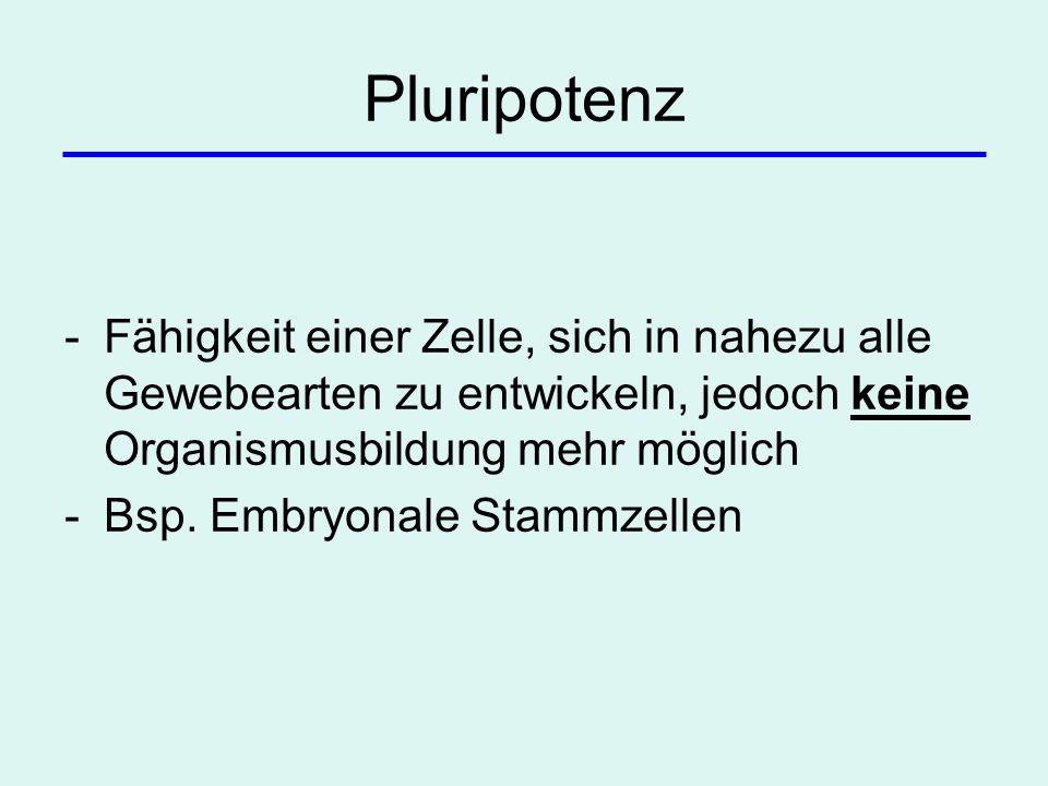 Pluripotenz -Fähigkeit einer Zelle, sich in nahezu alle Gewebearten zu entwickeln, jedoch keine Organismusbildung mehr möglich -Bsp. Embryonale Stammz