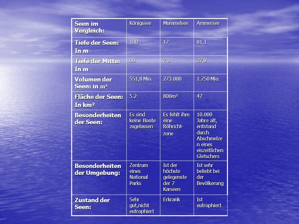 Seen im Vergleich: KönigsseeMummelsee Tiefe der Seen: In m 19017 Tiefe der Mitte: In m 907,2 Volumen der Seen: in m³ 551,8 Mio. 273.000 Fläche der See