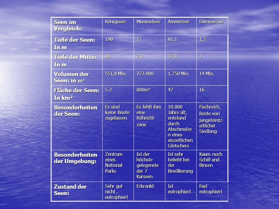 Seen im Vergleich: KönigsseeMummelseeAmmersee Tiefe der Seen: In m 1901781,1 Tiefe der Mitte: In m 907,237,8 Volumen der Seen: in m³ 551,8 Mio. 273.00