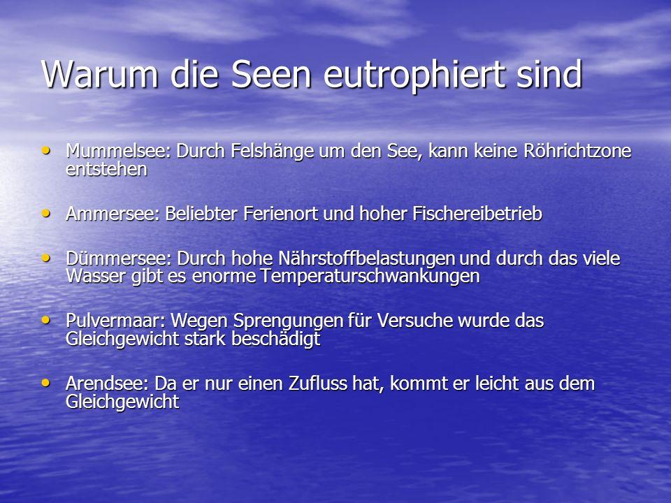 Tabelle Seen im Vergleich: KönigsseeMummelseeAmmerseeDümmerseePulvermaarArendsee Tiefe der Seen: In m 1901781,11,57048,7 Tiefe der Mitte: In m 907,237