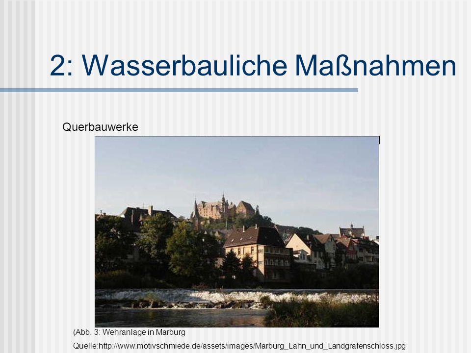 2: Wasserbauliche Maßnahmen Querbauwerke (Abb.