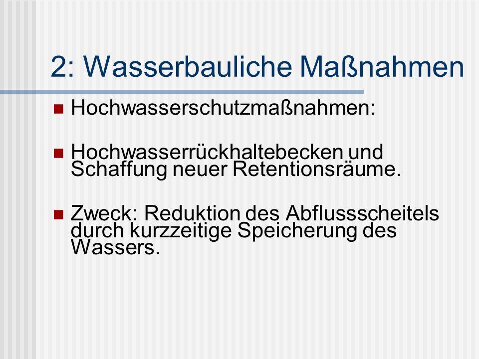 2: Wasserbauliche Maßnahmen Hochwasserschutzmaßnahmen: Hochwasserrückhaltebecken und Schaffung neuer Retentionsräume.