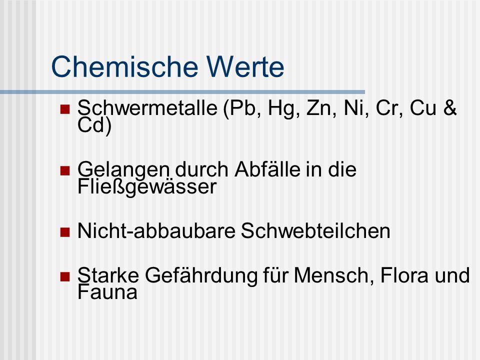 Chemische Werte Schwermetalle (Pb, Hg, Zn, Ni, Cr, Cu & Cd) Gelangen durch Abfälle in die Fließgewässer Nicht-abbaubare Schwebteilchen Starke Gefährdung für Mensch, Flora und Fauna
