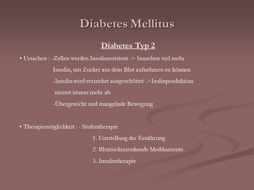 Diabetes Mellitus Diabetes Typ 2 Ursachen : -Zellen werden Insulinresistent -> brauchen viel mehr Insulin, um Zucker aus dem Blut aufnehmen zu können