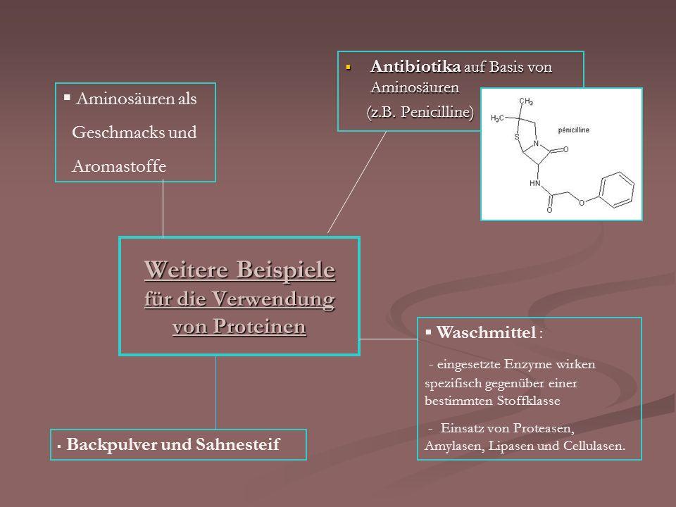 Weitere Beispiele für die Verwendung von Proteinen Antibiotika auf Basis von Aminosäuren Antibiotika auf Basis von Aminosäuren (z.B. Penicilline) (z.B